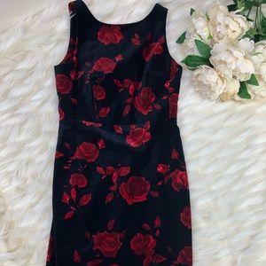 Talbots Velvet Rose Dress Size 6